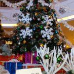 Marco ci augura Buon Natale da Panju Cina