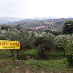 Tiny landscape of Valdisieve ... ciao Alessio!